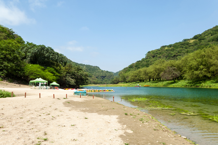 Everything You Need to Know About Salalah