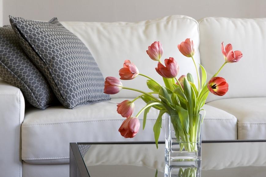Interior Design to Make Your Rental Feel Like Home