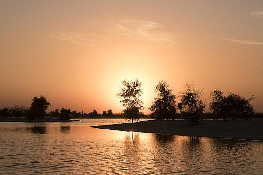 Camping at Al Qudra Lake has Been Banned