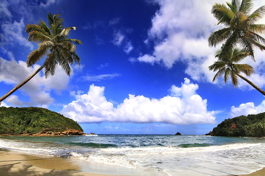 Moving To Dominica Guide For Expatriates
