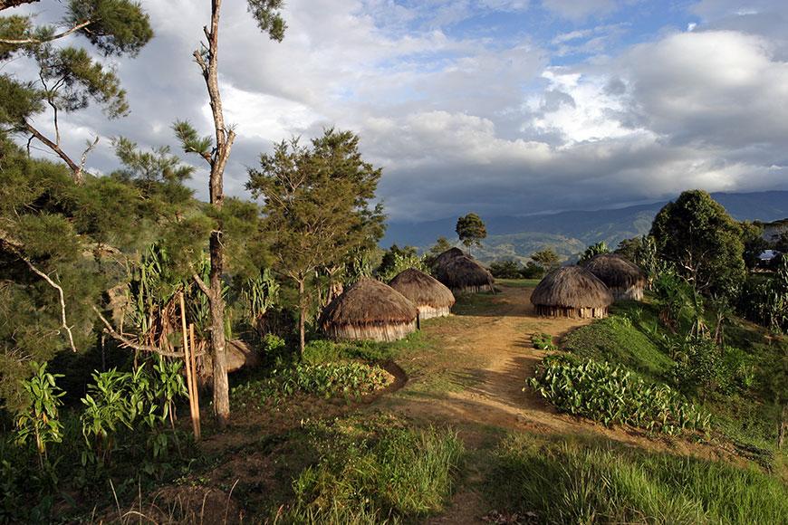 Papua New-Guinea