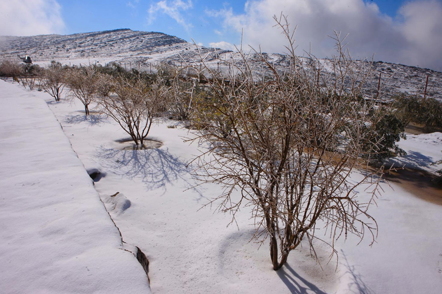 In Pictures: It Snowed in the UAE Over the Weekend