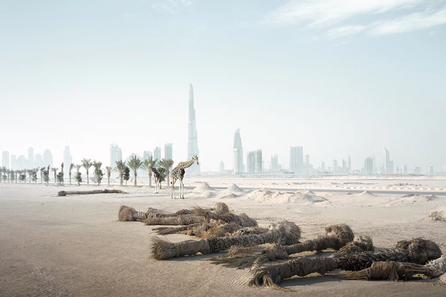 In Pics: Photographer Imagines Zoo Animals Loose in Dubai
