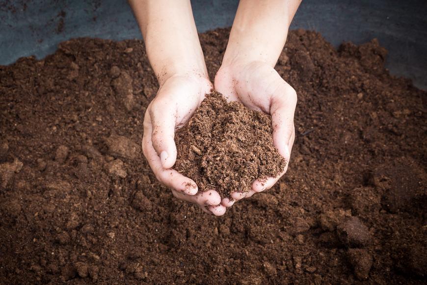 Choose the right compost for your Dubai garden
