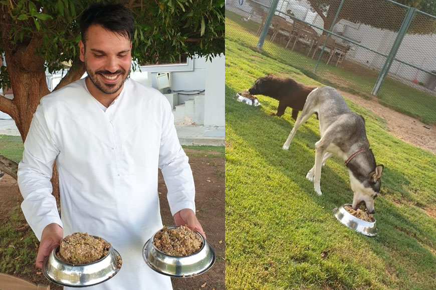 Stray Dogs Tuck Into 5-star Hotel Brunch Leftovers