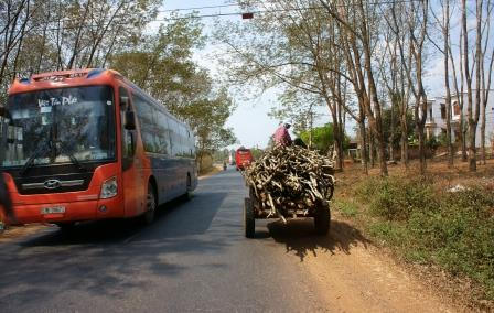 Busses in Vietnam