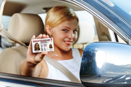 replace a lost drivers license