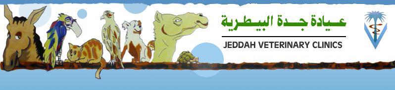 Jeddah Vets