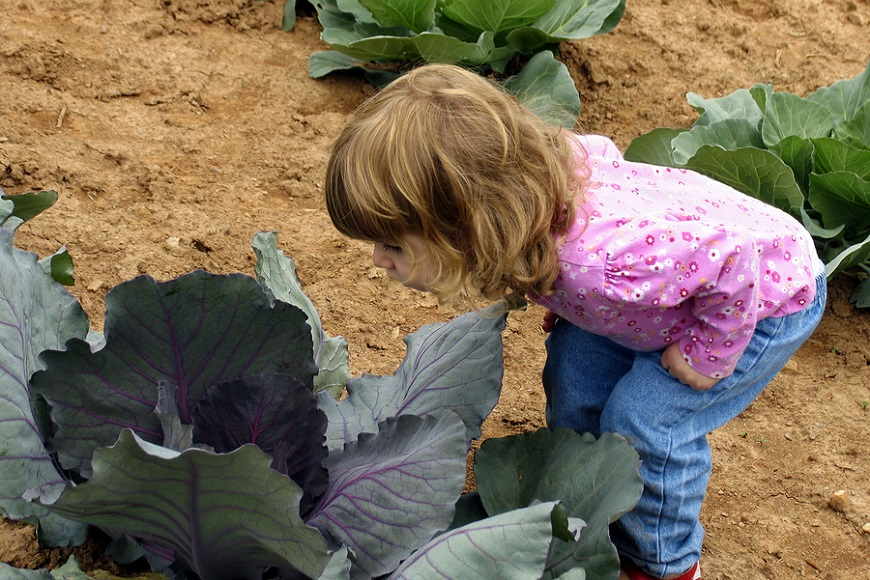 The importance of gardening for children