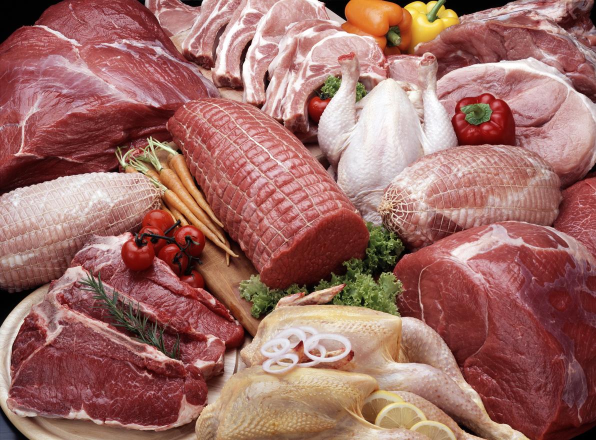 Raw pet food in Dubai and UAE