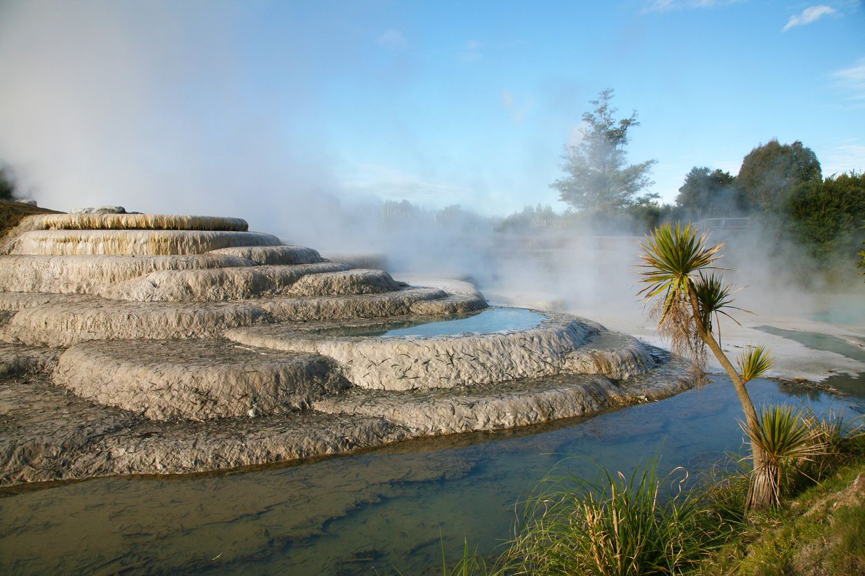 Cool Things to do With Kids in New Zealand.