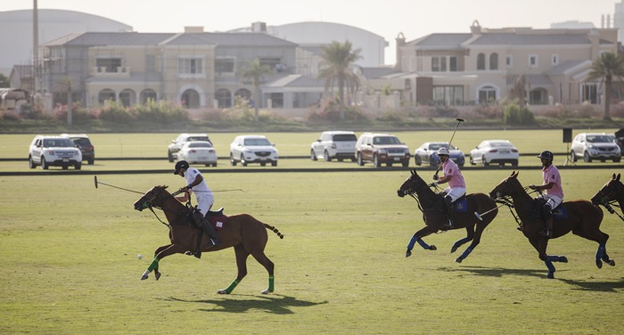 Dubai Polo and Equestrian Club