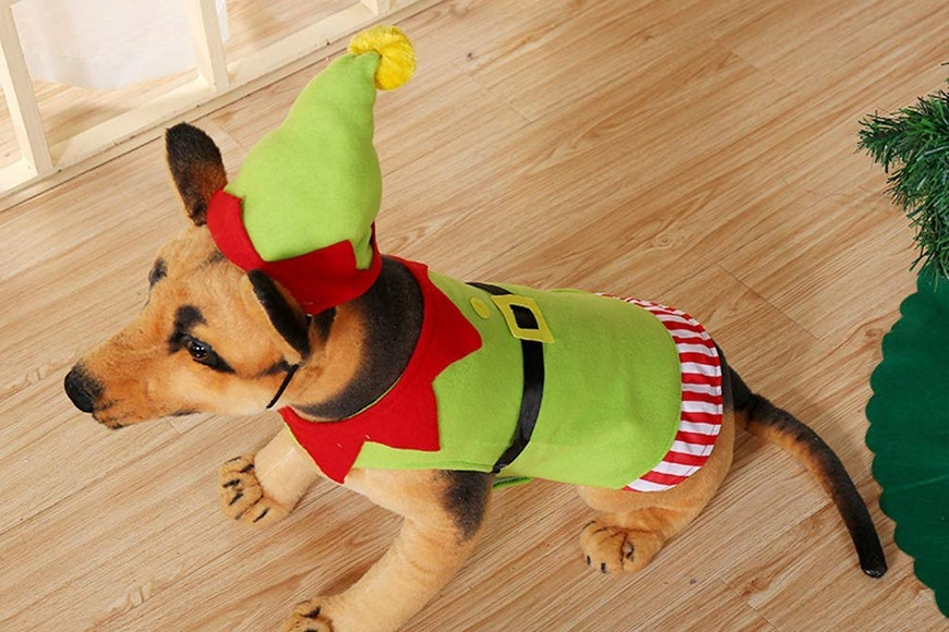 Elf Christmas costume for dogs