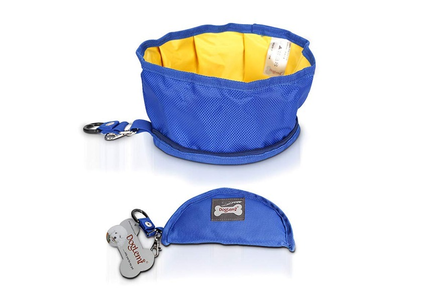 Collapsible water bowl for dogs