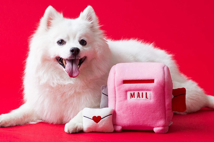 Mailbox with Love Letters Dog Toy