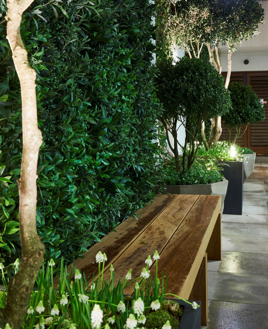 Artificial greenwall of magnolia, bay and buxus. Depth provided by pots planted with natural multi stems underplanted with seasonal bulbs for atmosphere, scent and colour