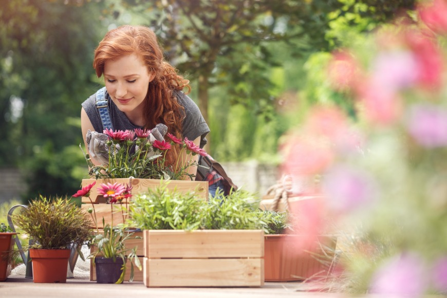 Could horticultural therapy help people with are simply stressed too?