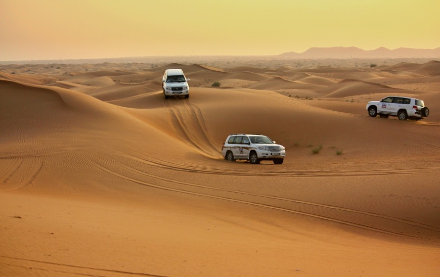 Try a desert safari with Cobone!