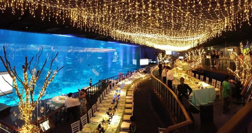SEA Aquarium | Photo: kexintay.blogspot.ae
