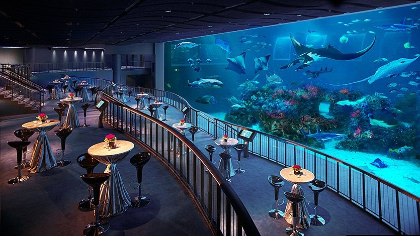 SEA Aquarium | Photo: rwsentosa.com