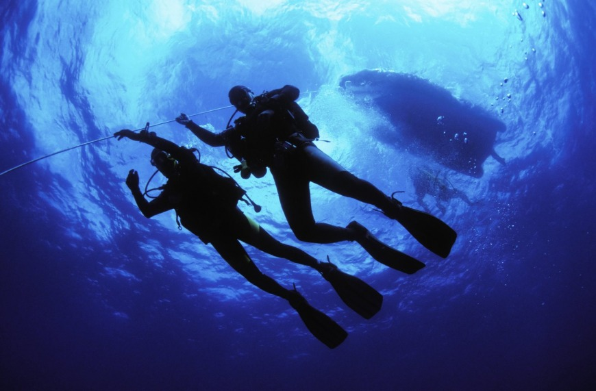 Diving in Oman is an unmissable experience.