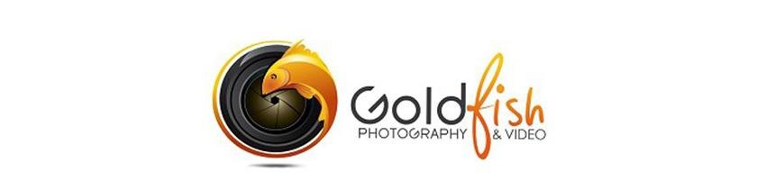 Goldfish Photography