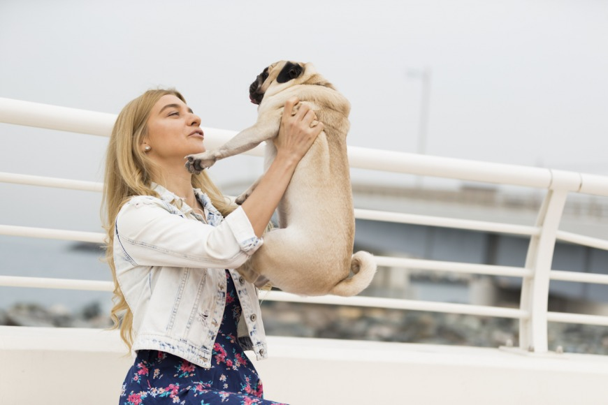 How to adopt a dog in Dubai and the UAE