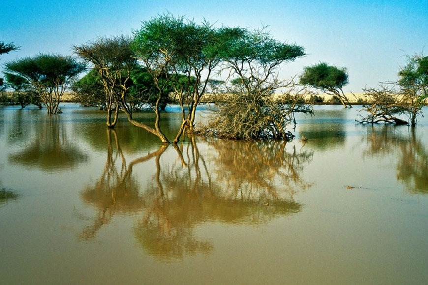 Best Natural Attractions in Qatar