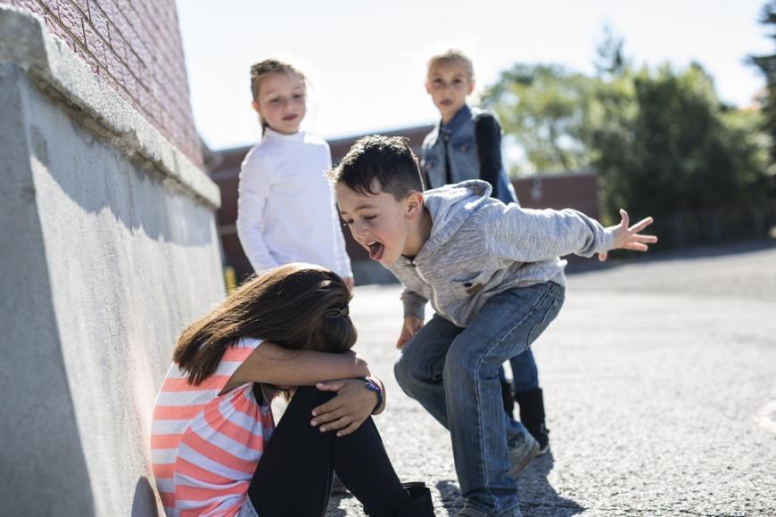 Bullying in Dubai Schools