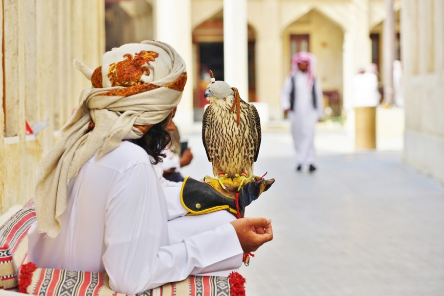Falcon Souq in Qatar