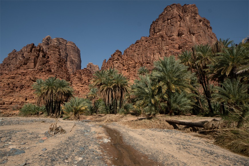 Oasis in the Tabuk mountains in Saudi Arabia