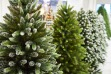 Where to Buy Your Christmas Tree in Dubai