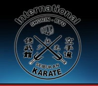 The Oriental Karate & Kobudo Club in Abu Dhabi