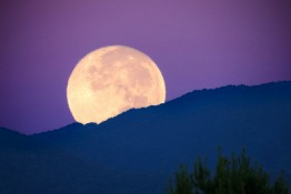 Where to See the Super Moon in the UAE