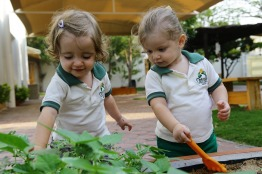 Importance of Nursery Education