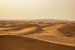 Expat Interview: Emily Liden - Having Fun in the Huge Sandbox
