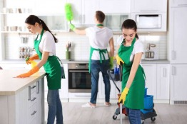 Cleanco: The Cleaning Experts for Your Home