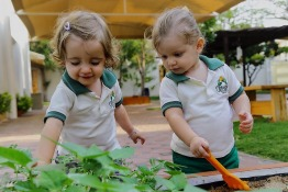 Welcome to Odyssey Nursery - Where Happiness Is Organic