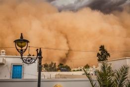 Sandstorm Survival Tips