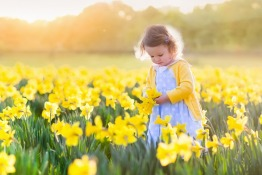 International Nursery is Shortlisted for Prestigious NDNA Award