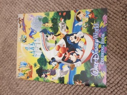 NEW Disney parks coloring book( USA)
