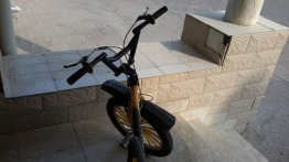 DOMINO RALLY BICYCLE FOR SALE