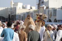 Sinaw Souq in Oman