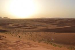 Desert Safari Tours from Dubai