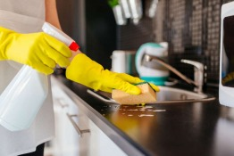 Keep Your Kitchen and Your Home Pest Free