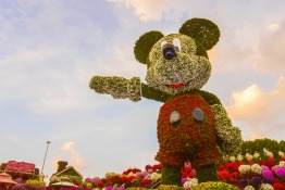 World's tallest floral Mickey Mouse at Dubai Miracle Garden