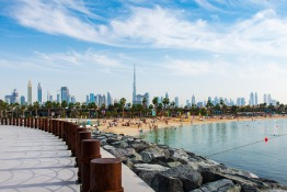 UAE Citizenship and UAE Passport for Expats