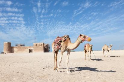 History of Qatar