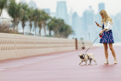 16 Awh-Worthy Pictures of Dogs in Dubai