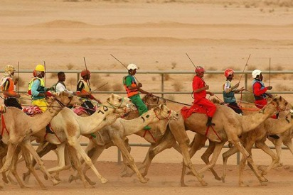 "Camels Strut Their Stuff in Saudi's Camel ""Beauty Pageant"""